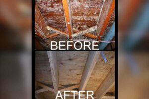 Restoration / Fire & Smoke / Mold Remediation